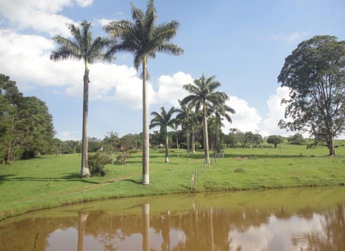 Chácara em Pinheirinho/SP de 48000m² 3 quartos a venda por R$ 1.250.000,00
