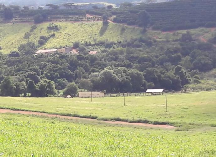 Chácara em Birica Do Campo Novo/SP de 300m² 3 quartos a venda por R$ 2.200.000,00