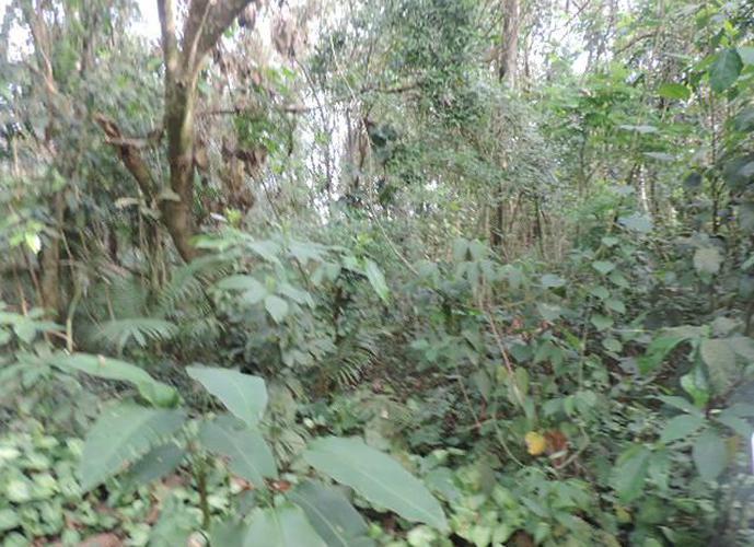 Terreno em Granja Viana/SP de 1227m² a venda por R$ 230.000,00