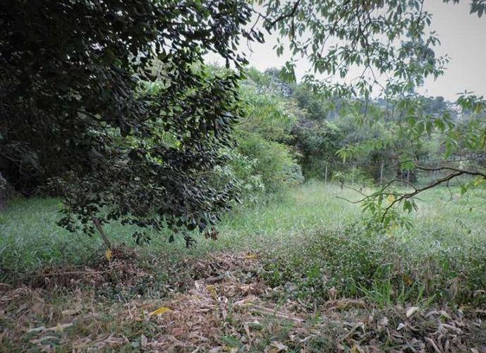 Terreno em Granja Viana/SP de 506m² a venda por R$ 305.000,00