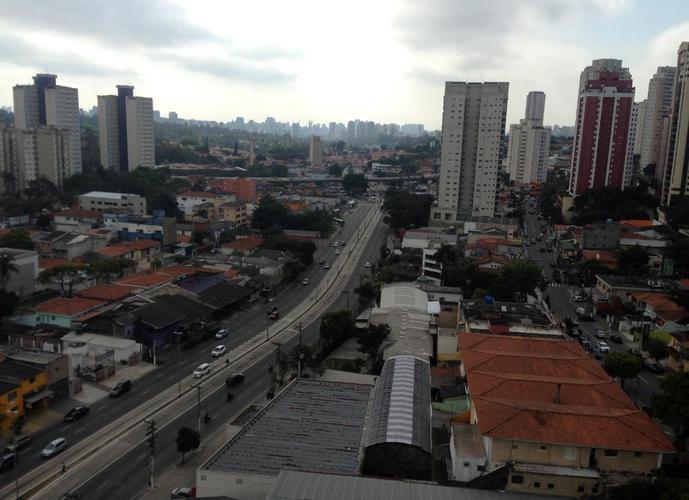 Cobertura residencial para venda e locação, Vila Mascote, São Paulo.