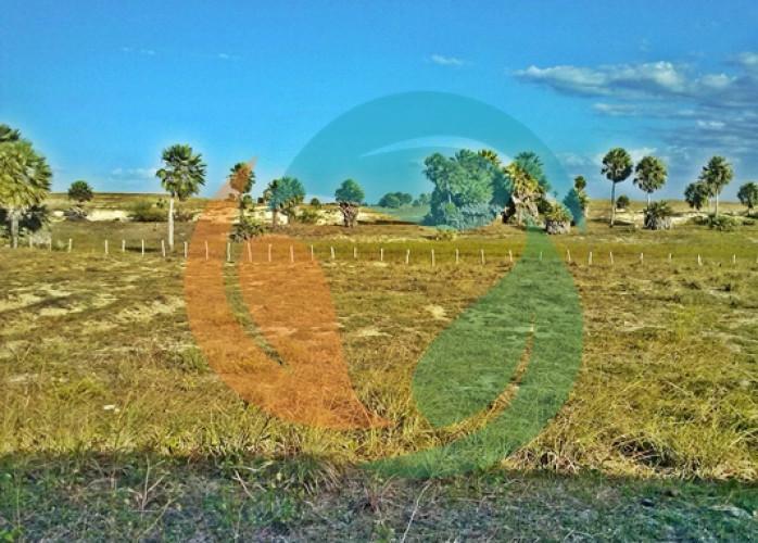 Área de 30 hectares com frente para a praia a venda no coqueiro em Luís Correia Piauí
