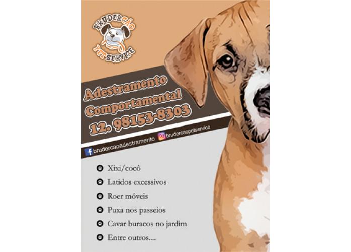 Dog Walker - Passeio Educacional  São José dos Campos