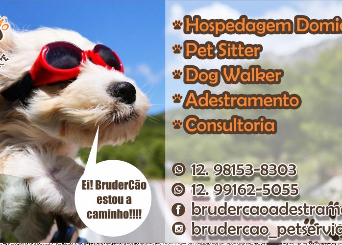 Cuidadores de Cachorros – Animal Estimação  São José dos Campos