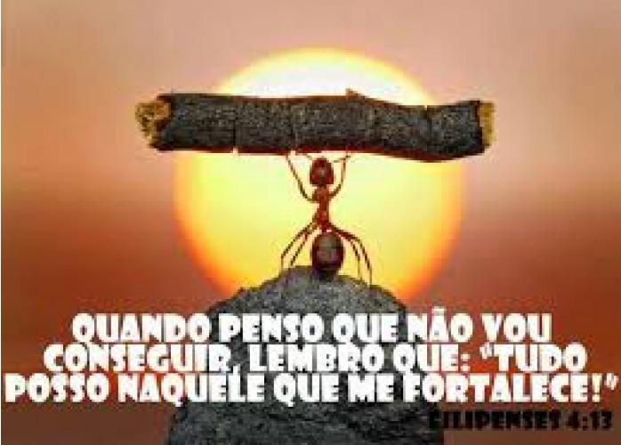 Sanfercoaching@@@Assessoria & Consultoria Empresarial e Financeira – Paraná-Pr