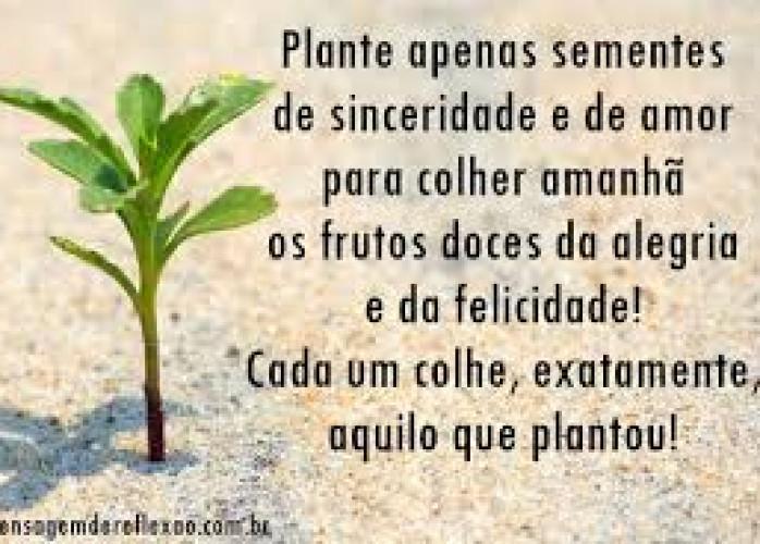 ParanáDigital###Faça sua empresa/serviços ficarem na primeira pg do google