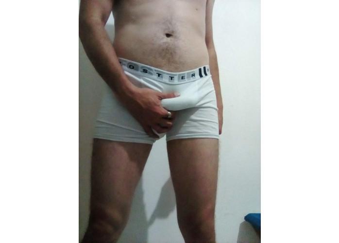 Novinho24