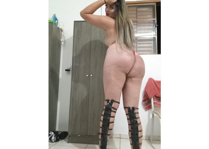 Alice Boneca Trans