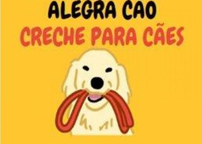 Creche para cães Sorocaba