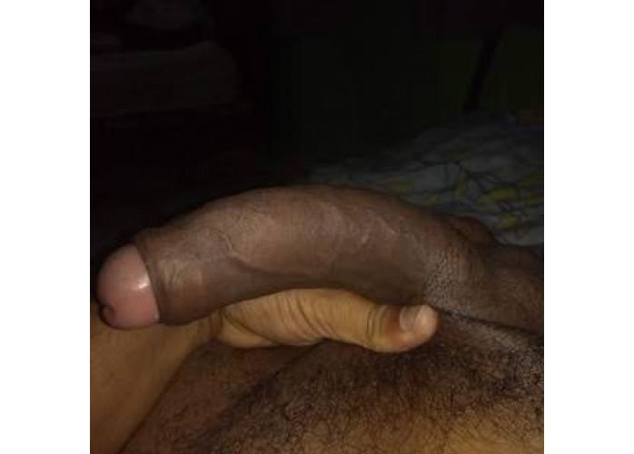 Dotado 20 cm