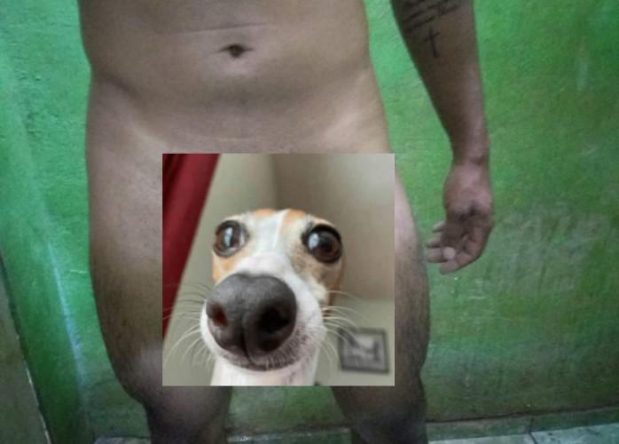 Vendo Fotos e Vídeo batendo Punheta 20$ via Pix.
